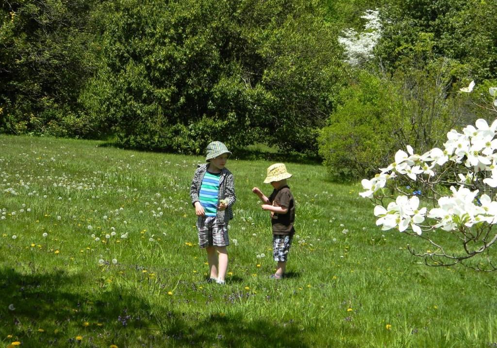 boys in spring