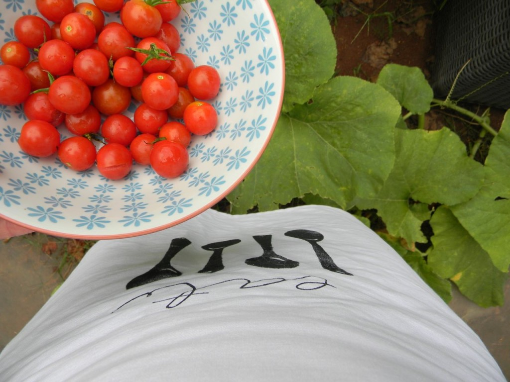 so pretty-the apron meets tomatoes