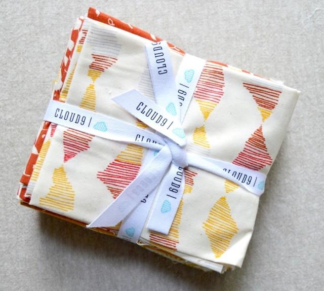 Rain Walk Tunic and fabric giveaway